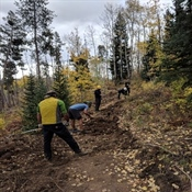 Everkrisp Trail Update